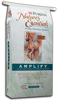 reiterman feed and supply purina natures essentials amplify