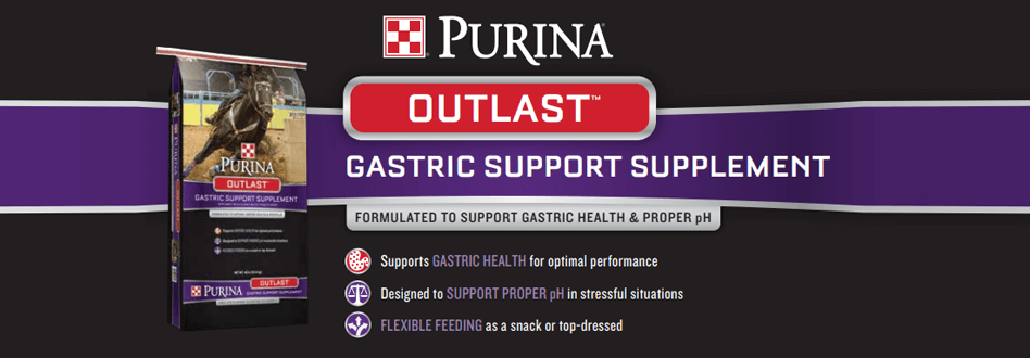 reiterman feed and supply purina outlast horse gastric support supplements